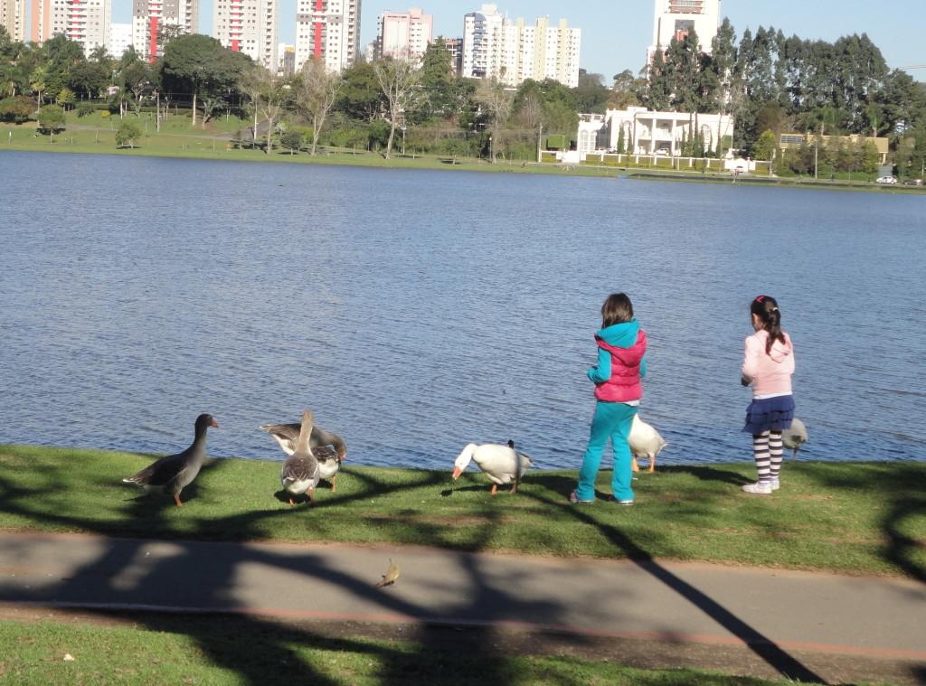 passeios em Curitiba com crianças gratuitos ou muito baratos
