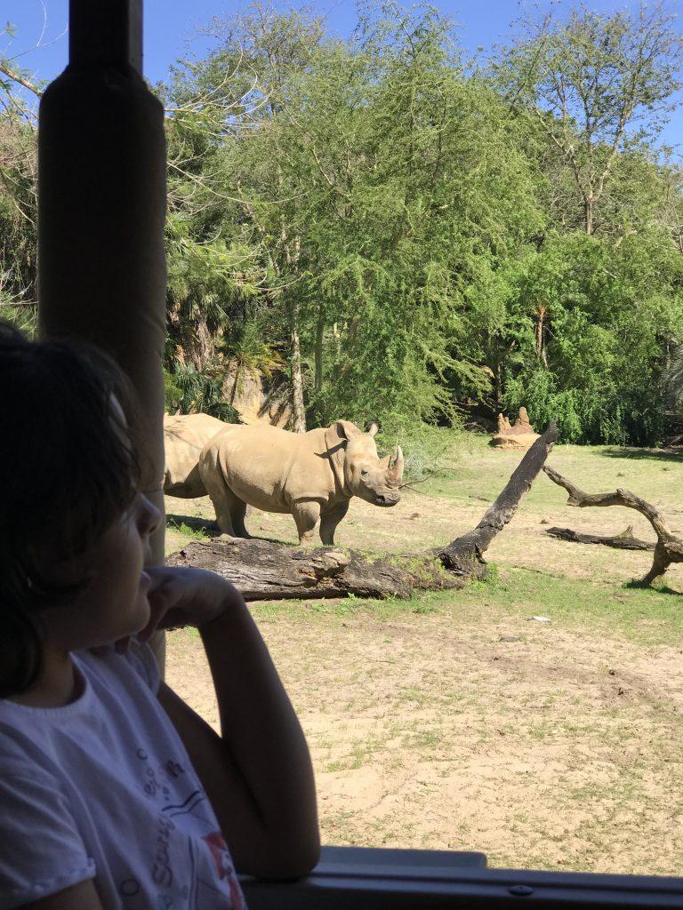 disney com crianças animal kingdom