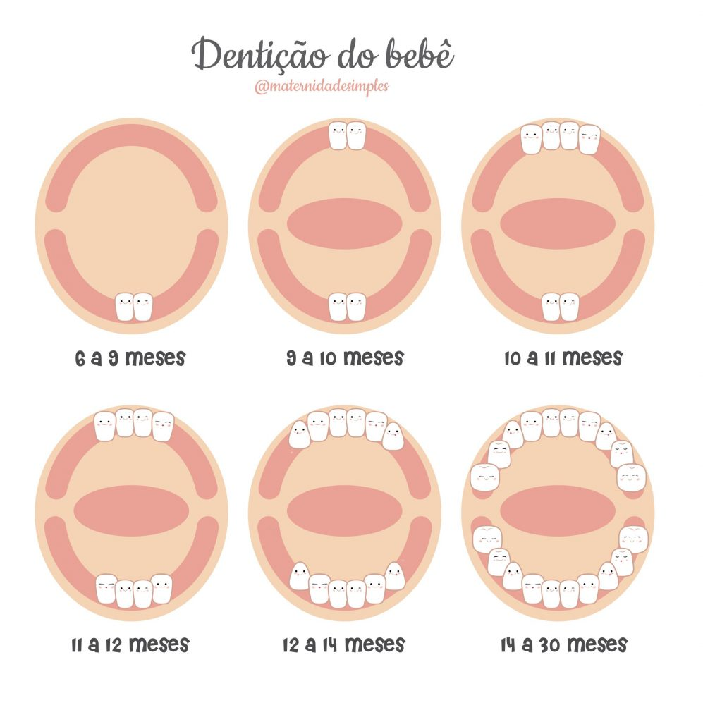 quando os dentes do bebê começam a nascer quando nasce o primeiro dentes