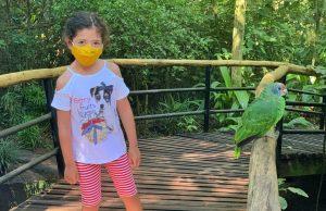 parque das aves com criança